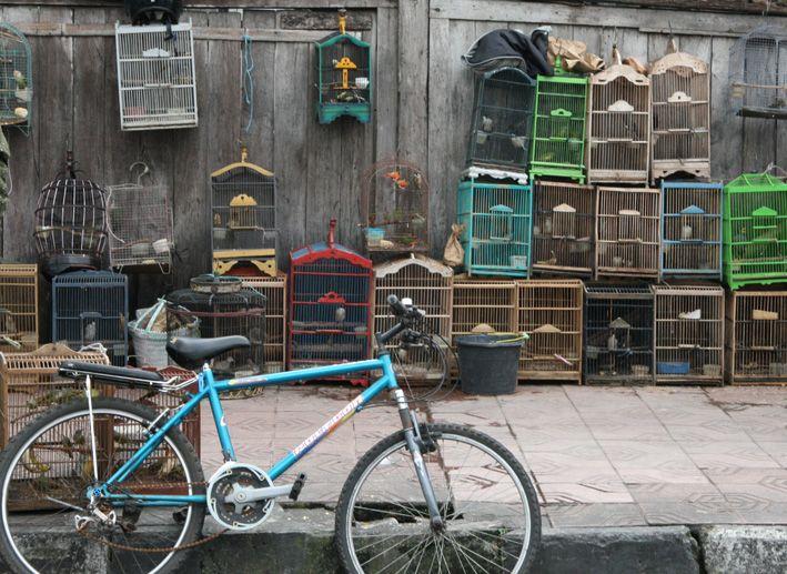 Kenangan Pasar Ngasem